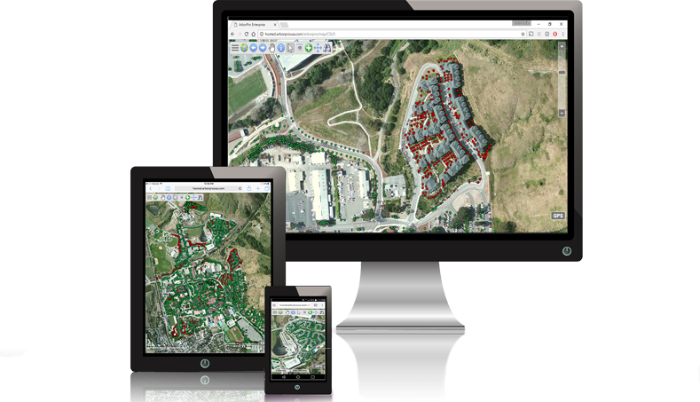 cloud based gis tree inventory urban forest management software