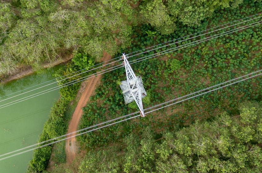 utility-aerial-vegetation-management[1]